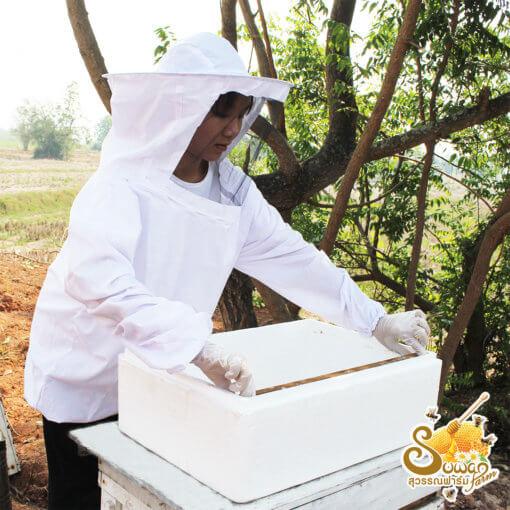 รวงผึ้งแบบเฟรม ขนาดต่อเฟรม 1.5-1.7 กก.(บรรจุในกล่อง 9 เฟรม)